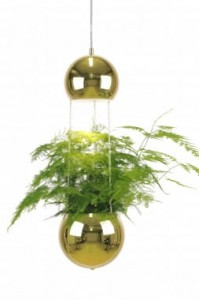 Lampa MINI PLANTER złota, ∅18x60cm  Globen Lighting